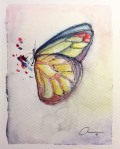 6th Butterfly. Collecting Butterflies. Watercolor and pen 13.5 x 18 x 0.2 cm. VENDIDA