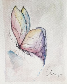 19th Butterfly Watercolor and pen 13.5 x 18 x 0.2 cm.