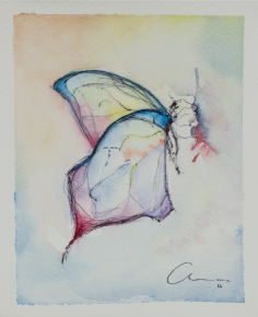 5th Butterfly Watercolor and pen 13.5 x 18 x 0.2 cm.